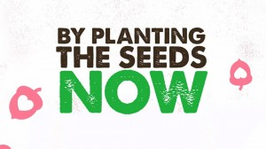 Seeds of Hope - Plant Seeds Now